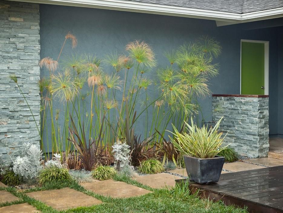 Colorful House - garden