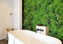 Image Un perete vegetal poate aduce natura permanent in casa ta