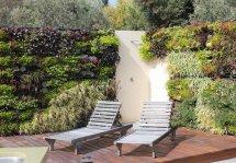 Image Gradina verticala, solutia pentru gradinile de mici dimensiuni