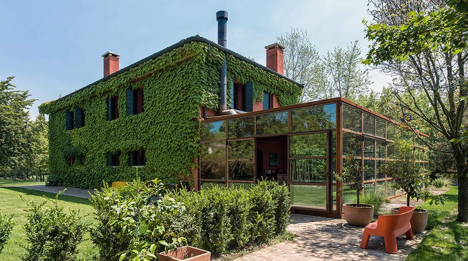 Ivy, Steel and Glass - A House Blending In with the Environment