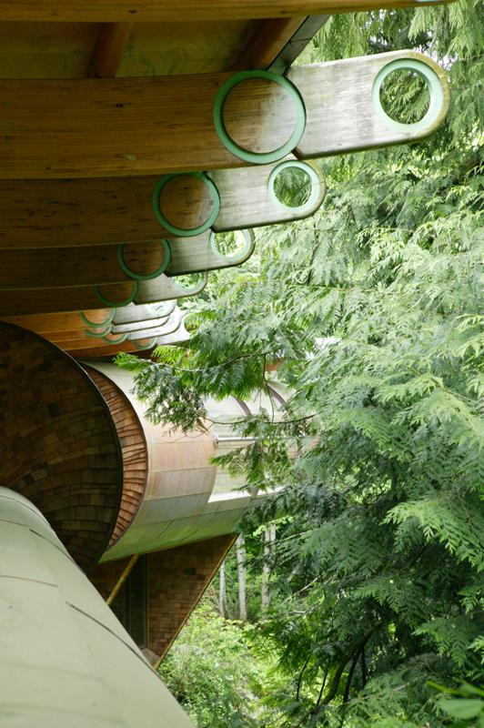 Organic architecture - tree house